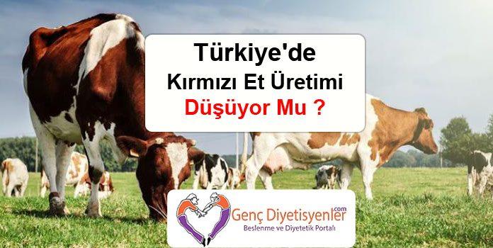 Türkiye'de Kırmızı Et Üretimi Düşüyor Mu