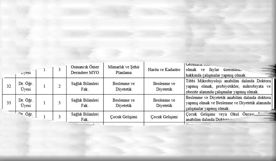 Hitit Üniversitesi 46 Öğretim Üyesi Alımı