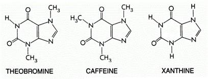 kahvenin bileşimi