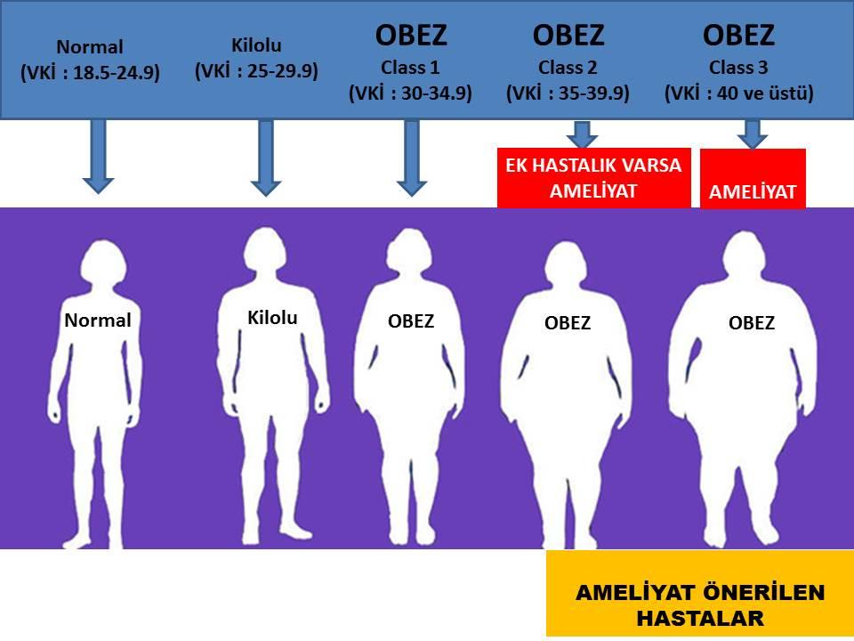 obezite indeksler