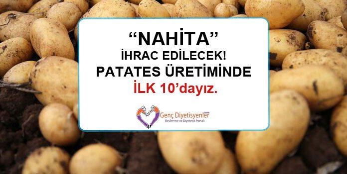 nahita patates üretiminde ilk 10 dayız