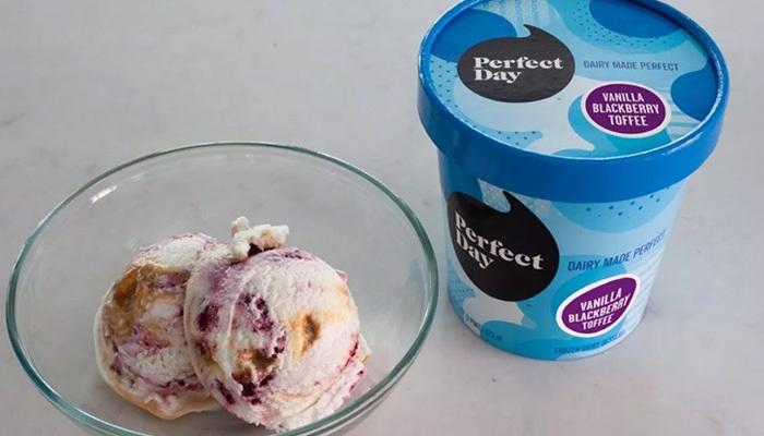 vegan dondurma