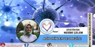 Diyetisyen Nesibe Çelem - ADİPOKİNLER VE OBEZİTE'